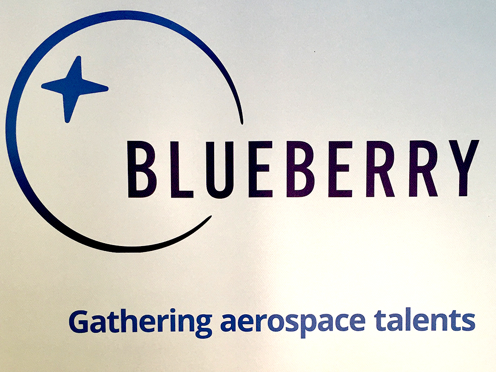 Logo Blueberry Holding